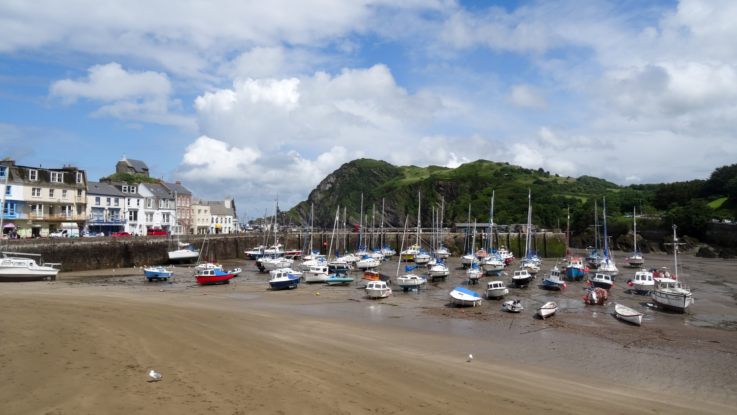 Ilfracombe harbour town