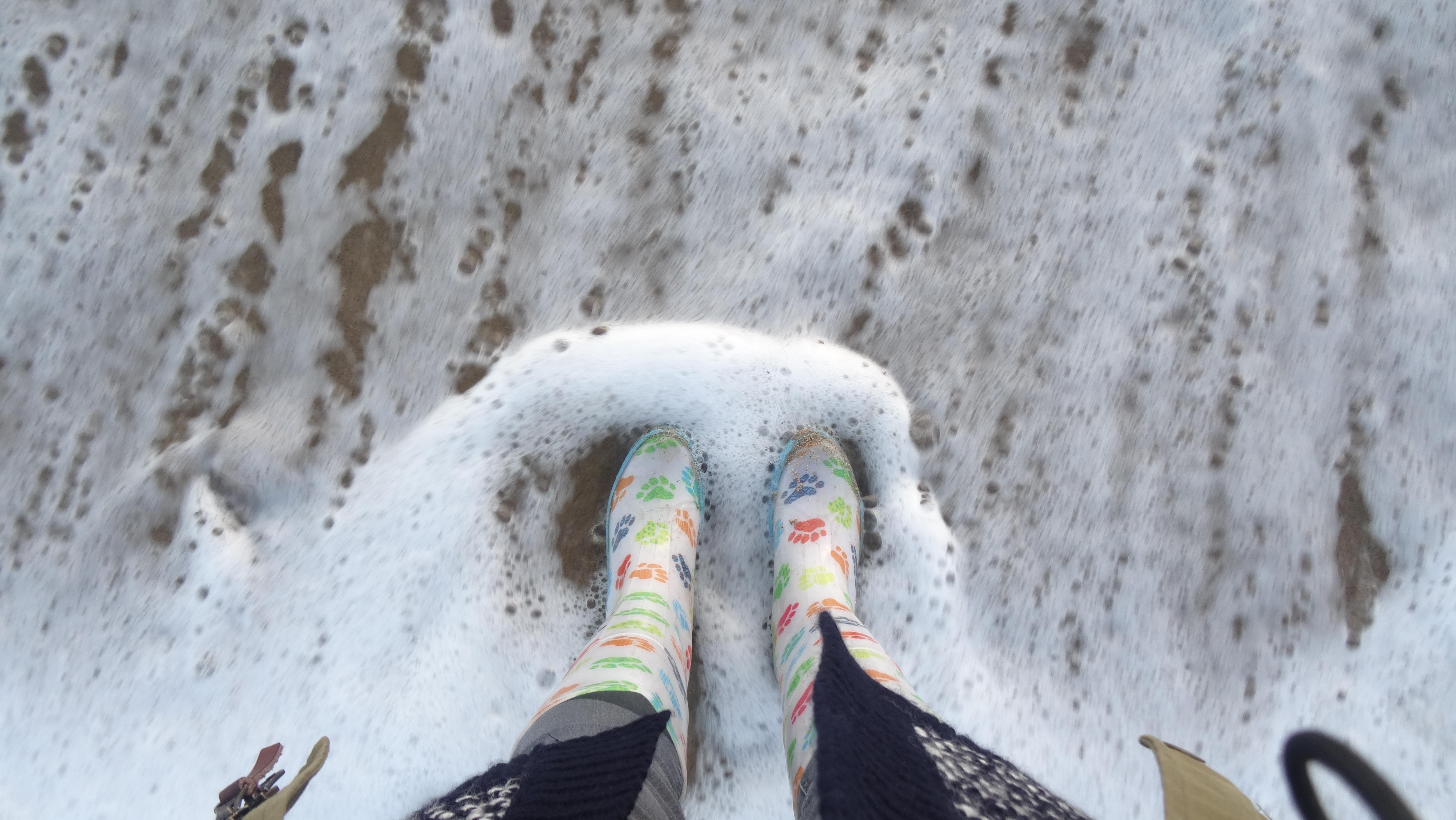 cornish winter things to do