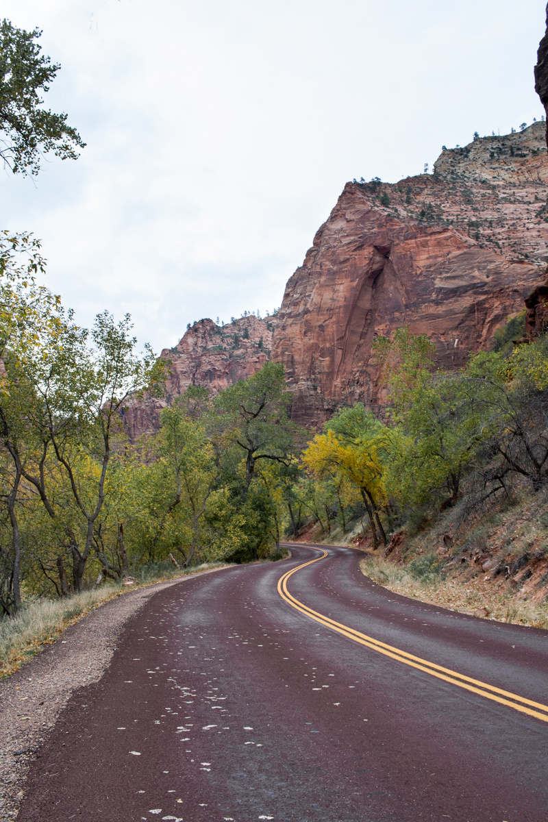 Zion National Park in the fall + a secret waterfall! | ZNP | Travel Utah | Explore Utah | Find Your Park