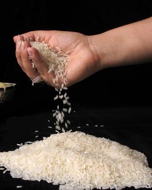 Arroz, el cereal sin alérgenos