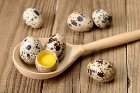 Razones Poderosas para Preferir el Huevo de Codorniz