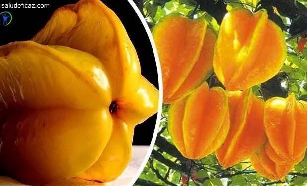 propiedades y beneficios de la fruta carambola