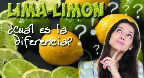 Cual es la diferencia entre la lima y el limón