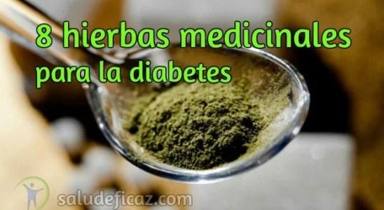 8 hierbas medicinales para la diabetes