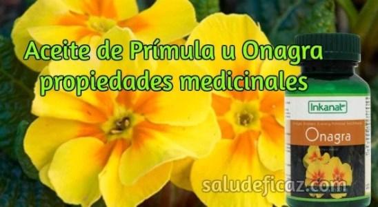 Propiedades medicinales del aceite de prímula