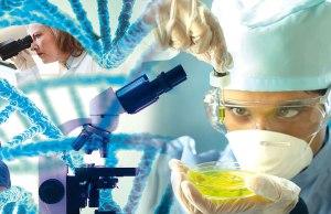 Un nuevo mapa proporciona una ventaja sobre cómo destruir enzimas relacionadas con el cáncer