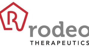 Amgen adquirirá la biofarmacéutica Rodeo Therapeutics