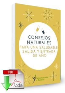 E-book Navidad gratis