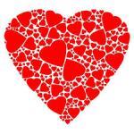 14 Recomendaciones Dietéticas Para la Salud Cardiovascular