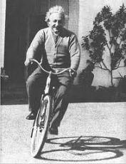Einstein Time Saluki Marooned