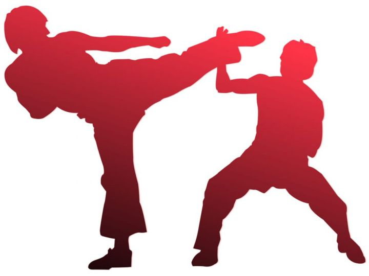 Due lezioni di karate gratis offerte dalla A.S.D. Enchoyama Karate Club