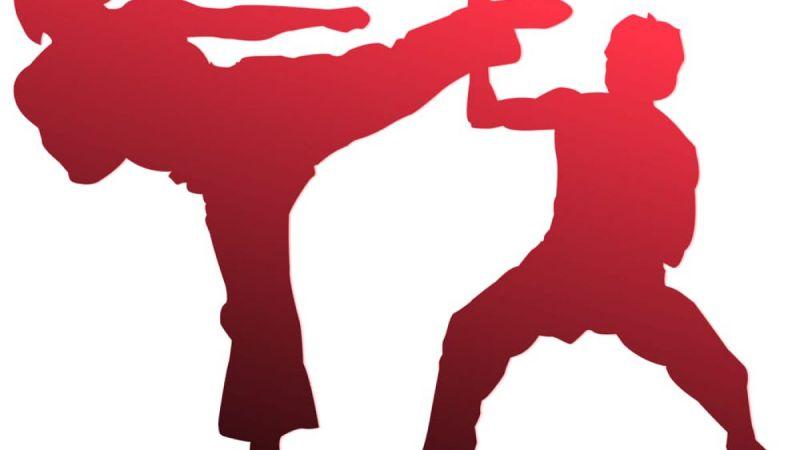 Si sono svolti online gli esami cintura di karate