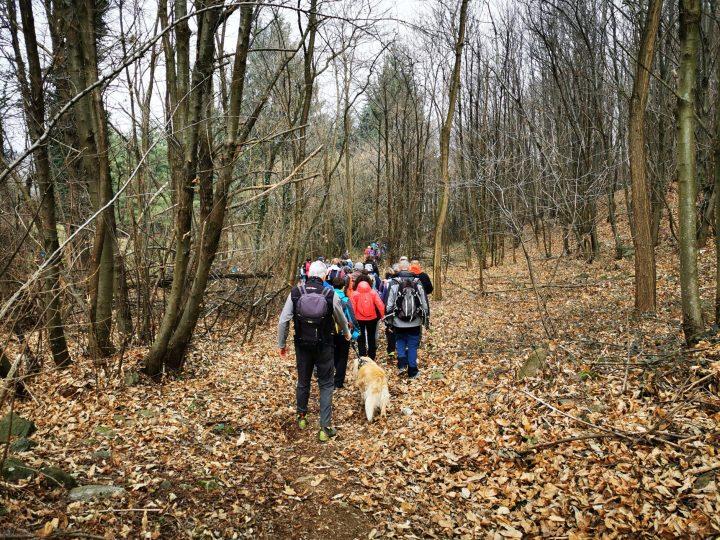 Lo Slowland Piemonte ha portato circa 250 persone sui sentieri della collina tra Roppolo, Viverone e Salussola