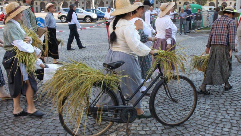 10 anni fa la Pro Loco di Salussola alla Sagra delle Sagre di Asti – FOTOGALLERIA
