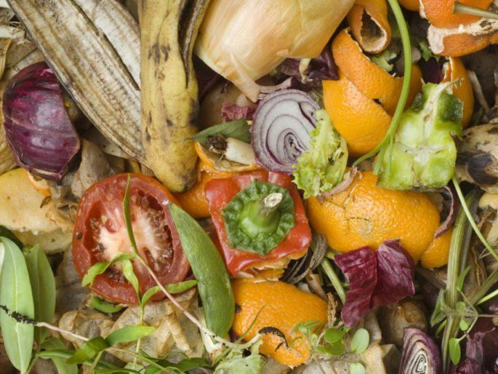 Sapete quanto organico ha prodotto in media un Salussolese ?
