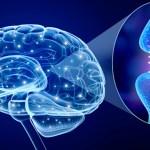 Scoperto nuovo metodo per la cura del Parkinson