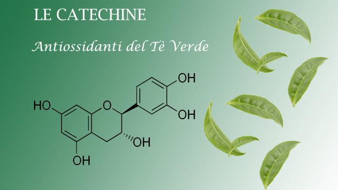 Catechine