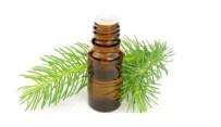 Olio essenziale di pino