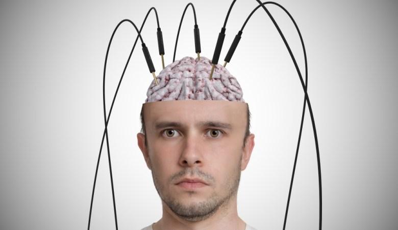 cervello bullismo