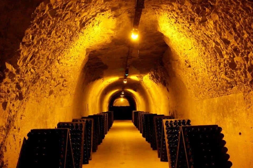 Day trip from Paris to Reims for everyone who likes wine and champagne - Reims - just an hour away from Paris, take a Champagne day tour from Paris