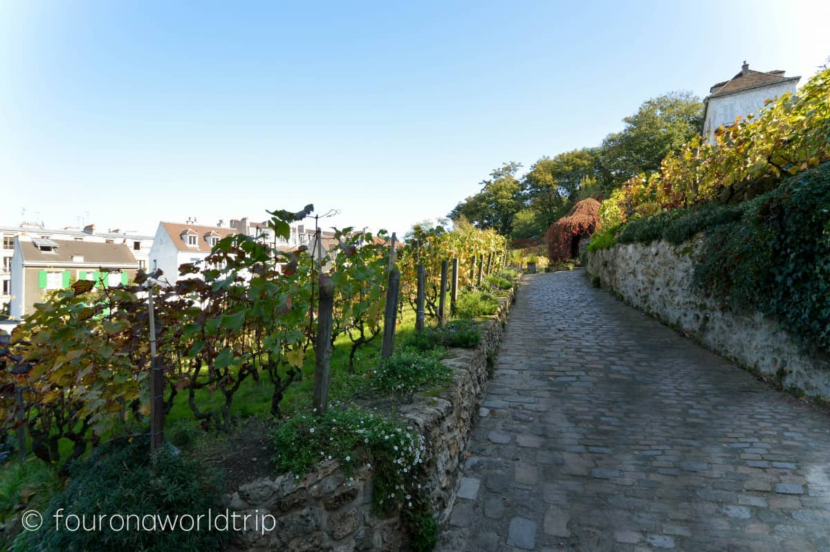 The quartier Montmartre has one of the last vineyards of Paris. From there it's also just a short walk to the cimetiere montmartre