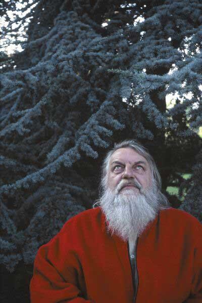 Robert Wyatt under the Tree