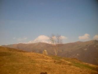Campo-di-Pasqua_0096