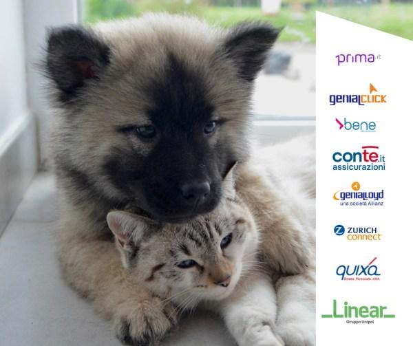 assicurazioni cane gatto