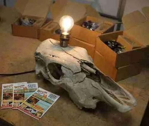 Skull lamp workshop