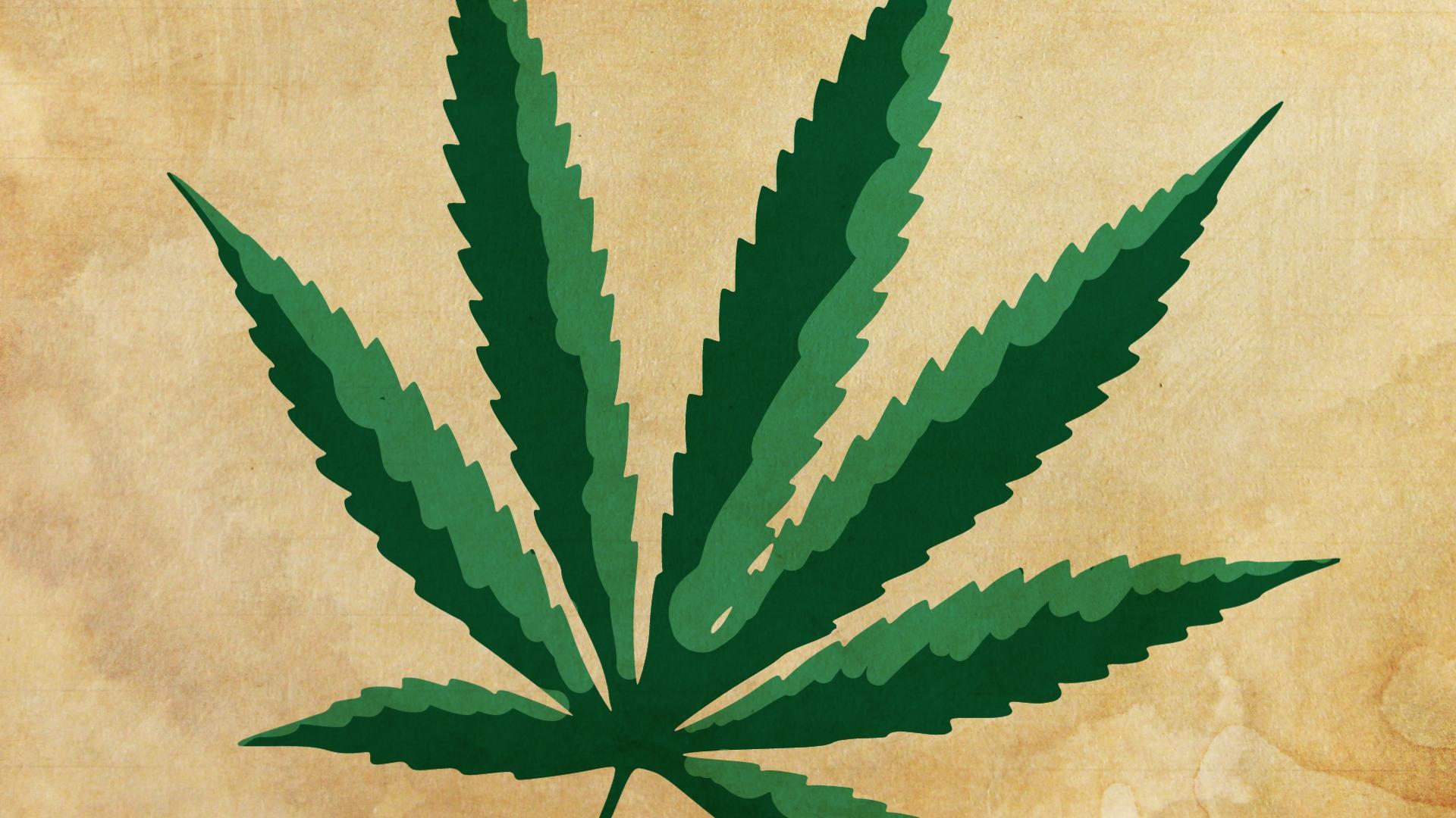 Marijuana rinvenuta in proprietà familiare: sussistenza del concorso di persone nel reato