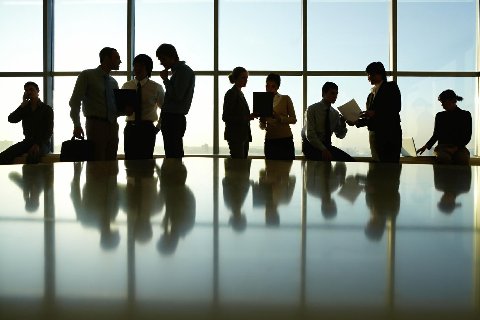 Le Società a partecipazione pubblica e la responsabilità degli amministratori