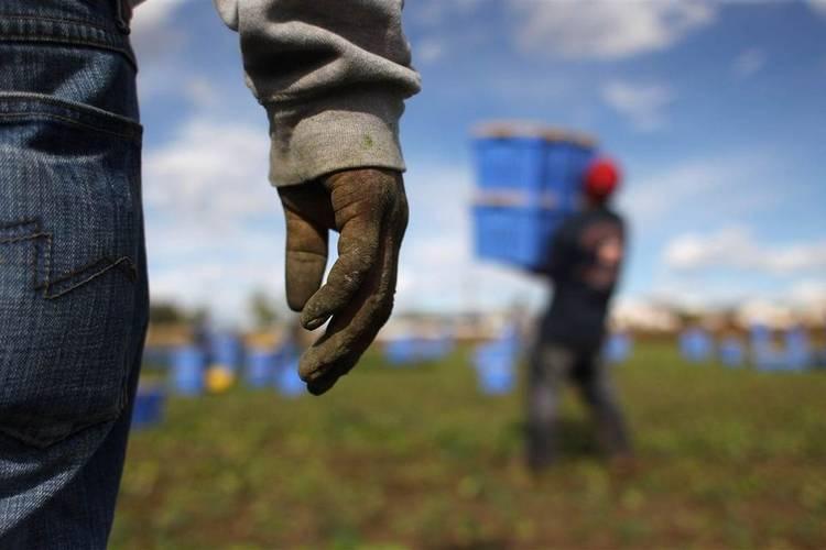 Regime sanzionatorio a carico di datori di lavoro per l'assunzione di lavoratori stranieri irregolari