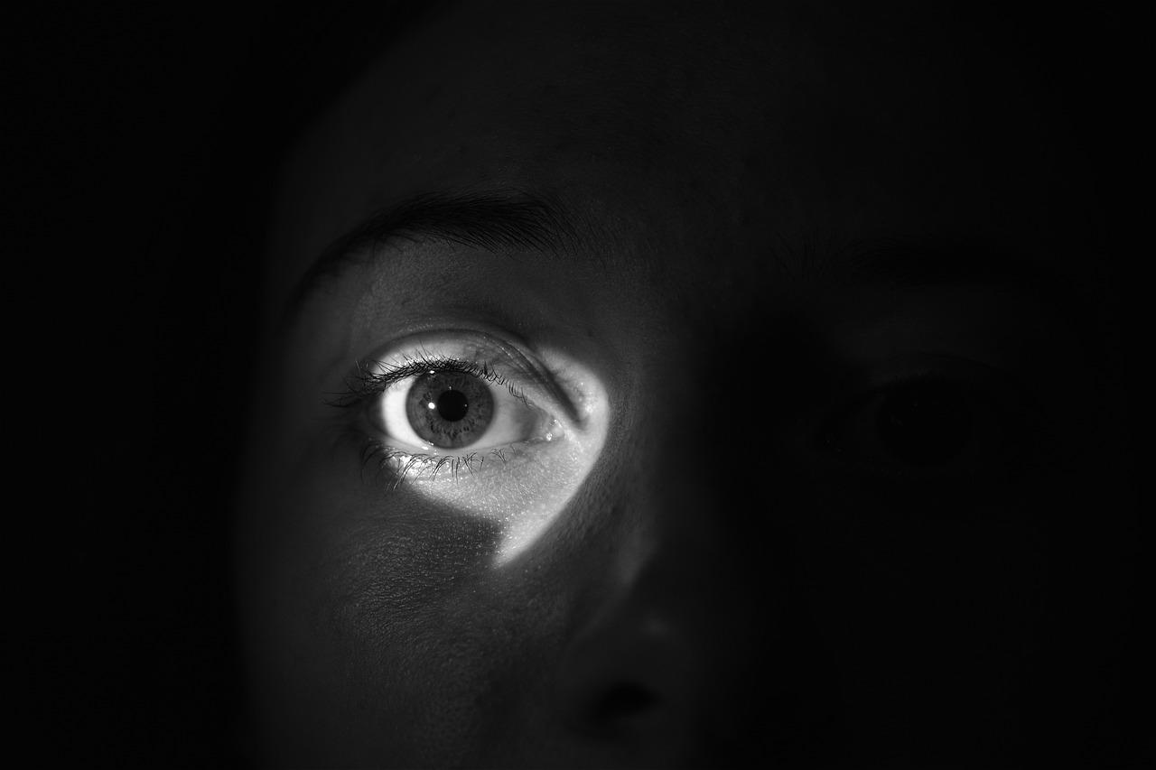 Il fenomeno Stalking: una piaga sociale, un cantiere aperto