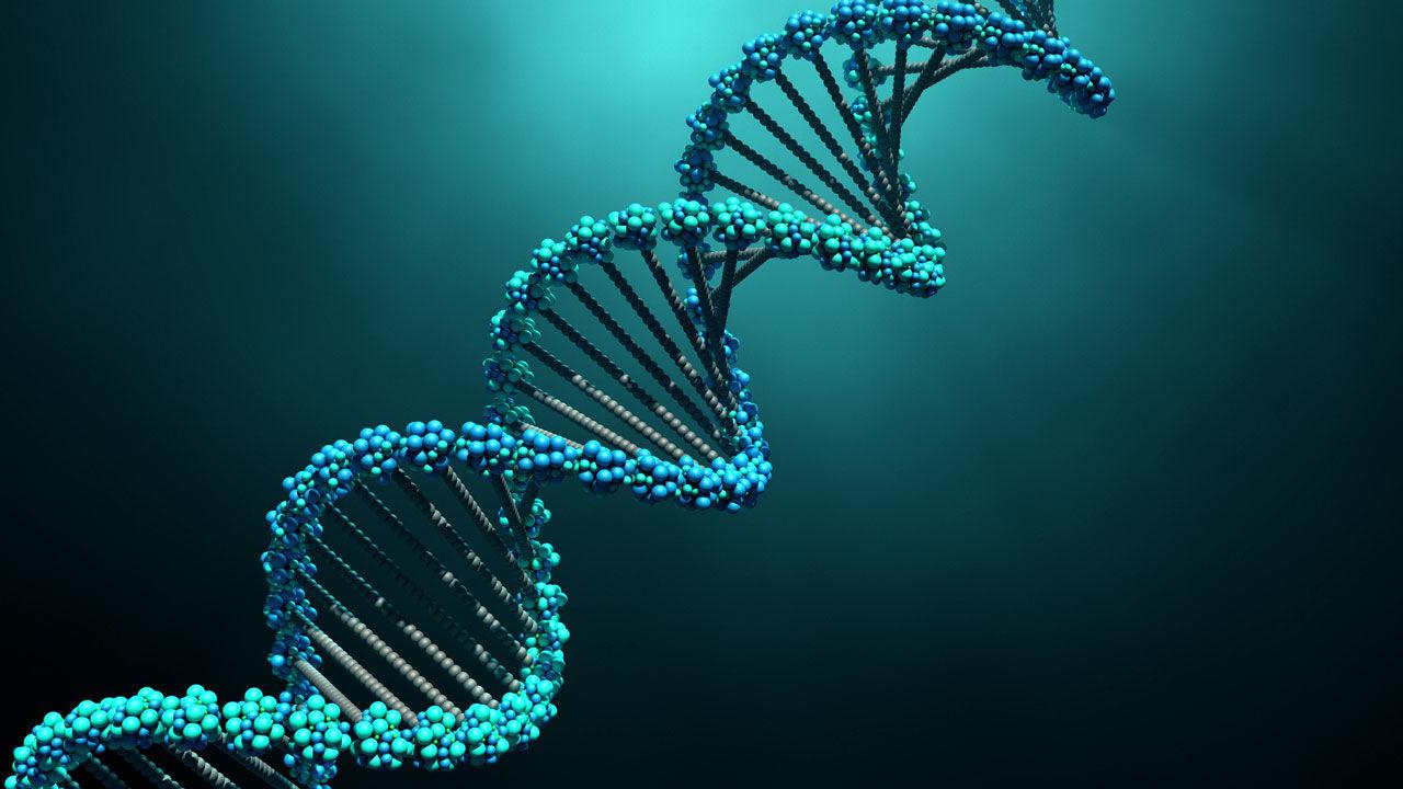 La prova del DNA nel procedimento di dichiarazione giudiziale di paternità