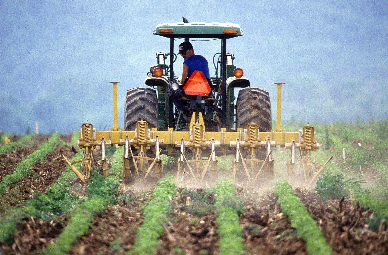 Internazionalizzazione delle PMI agroalimentari e gli strumenti predisposti a tale scopo