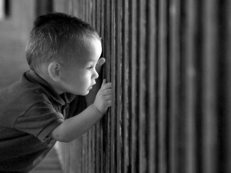 La paternità in carcere tra illegittimità costituzionale e (recenti) aperture giurisprudenziali