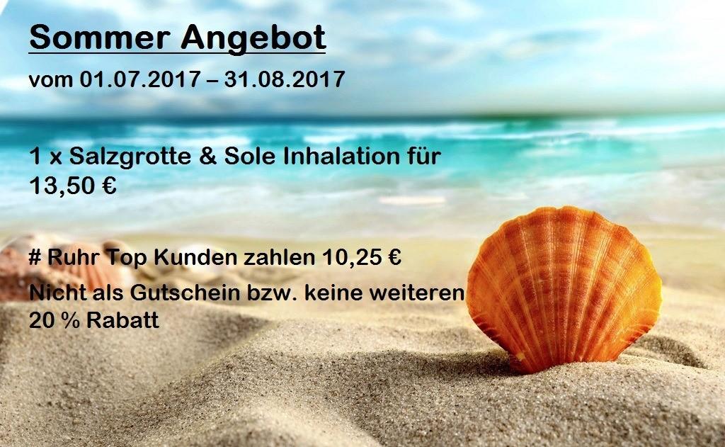 Ruhrtop Karte.Sommerangebot 2017 Salzgrotte Solevernebelung Zum