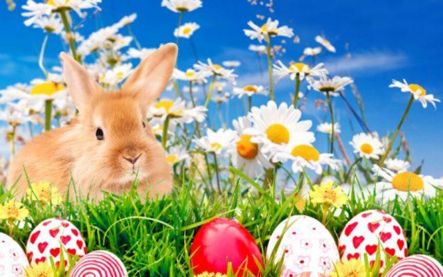 Ihnen ein fröhlich-harmonisches Osterfest!