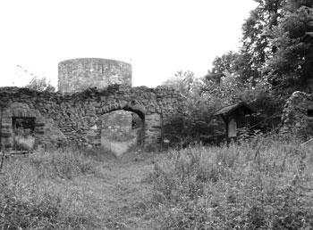 Die Ruine der Homburg bei Stadtoldendorf (Foto: Kölle, August 2005)