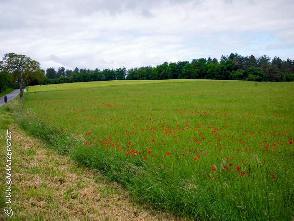 19. Tag: Ecuras - Agouleme (Frankreich)