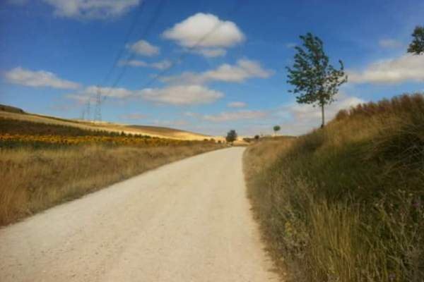 Why You Should Walk The Camino De Santiago