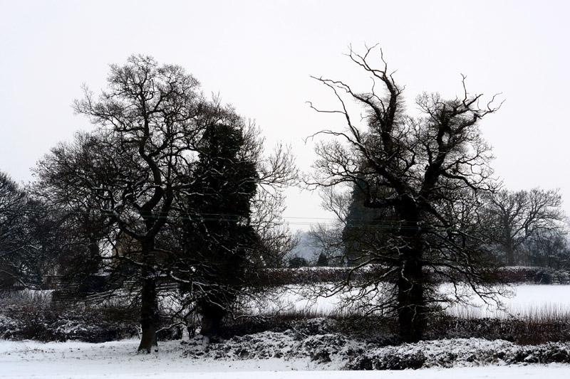 The Cotswolds Way, Painswick