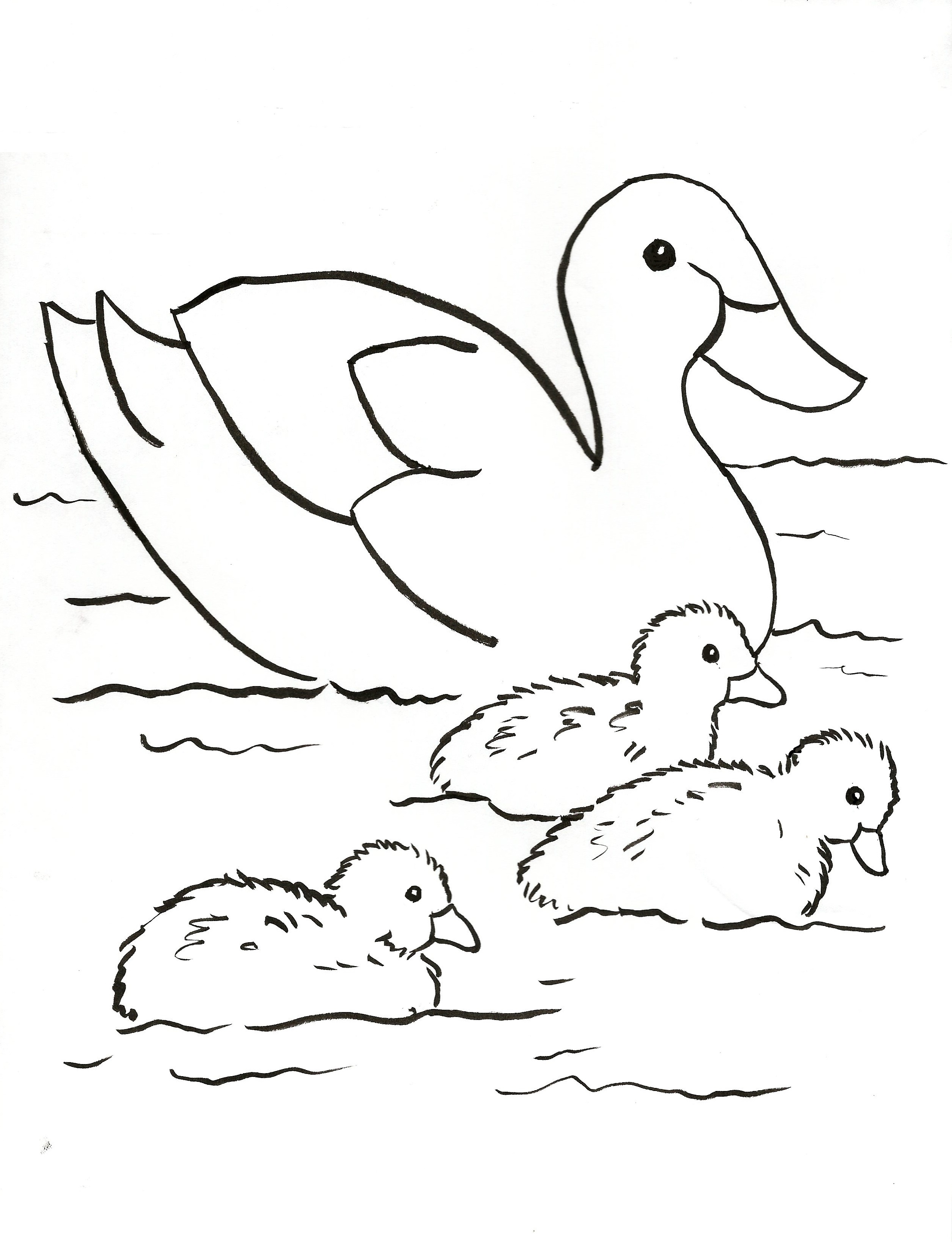 Duck Family Coloring Page