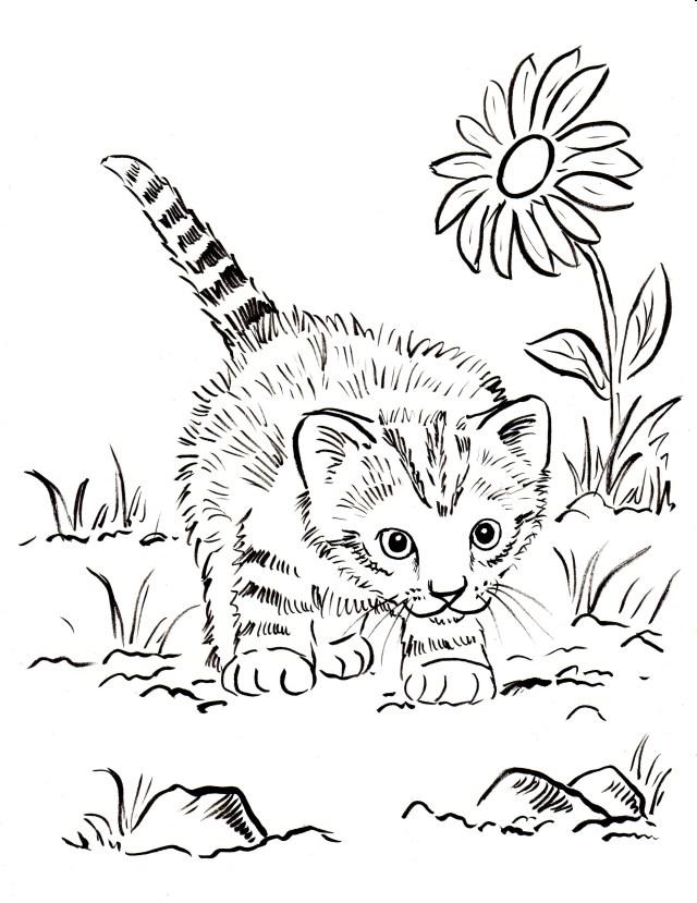 Kitten Coloring Page - Art Starts