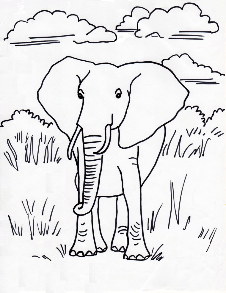elephant coloring pages e is for elephant gif