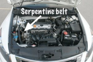 Serpentine belt, tensioner: problems, signs of wear, when to replace, noises
