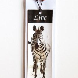 Zebra – Live
