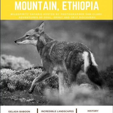 MOUNTAIN TO MOUNTAIN, ETHIOPIA SEPTEMBER 2020