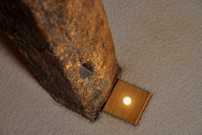 Floor light