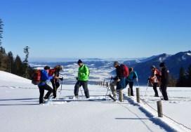 Schneeschuhschnuppern II